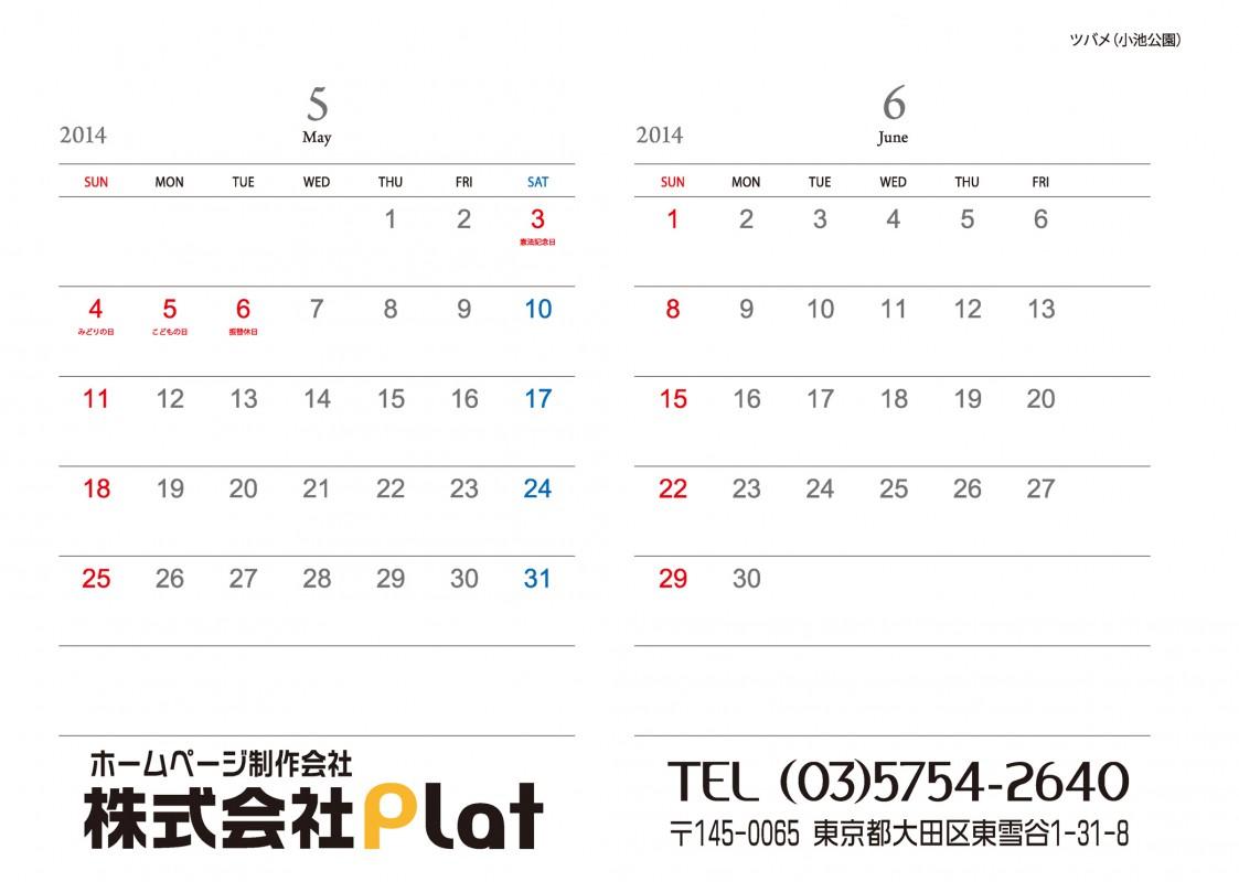 Platカレンター2014