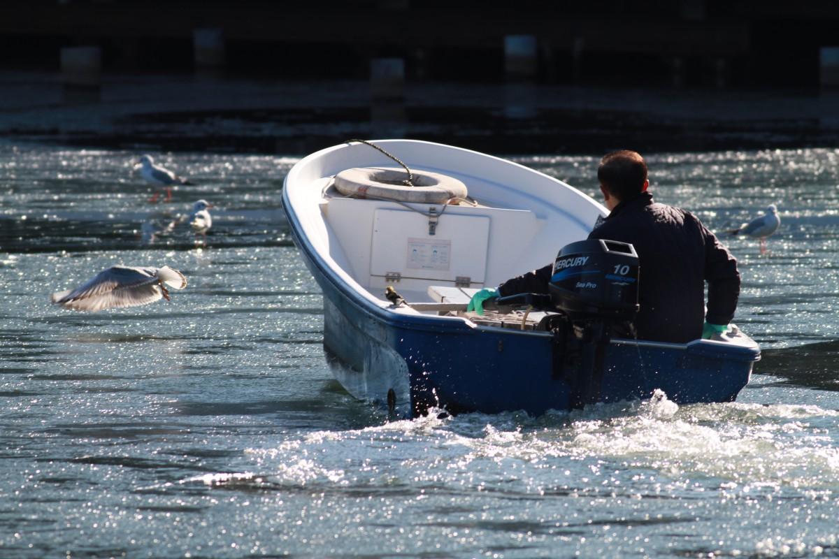 洗足池の砕氷船?