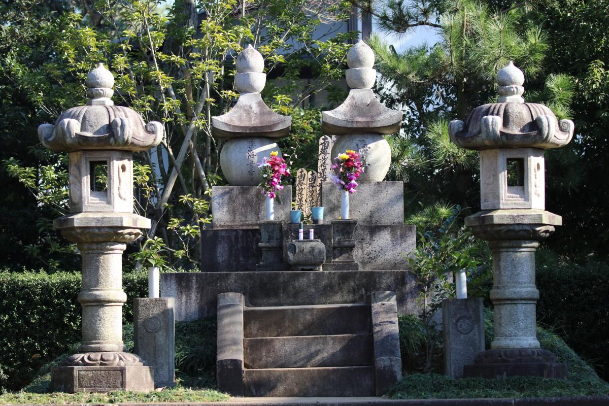 洗足池の勝海舟のお墓にジョウビタキ