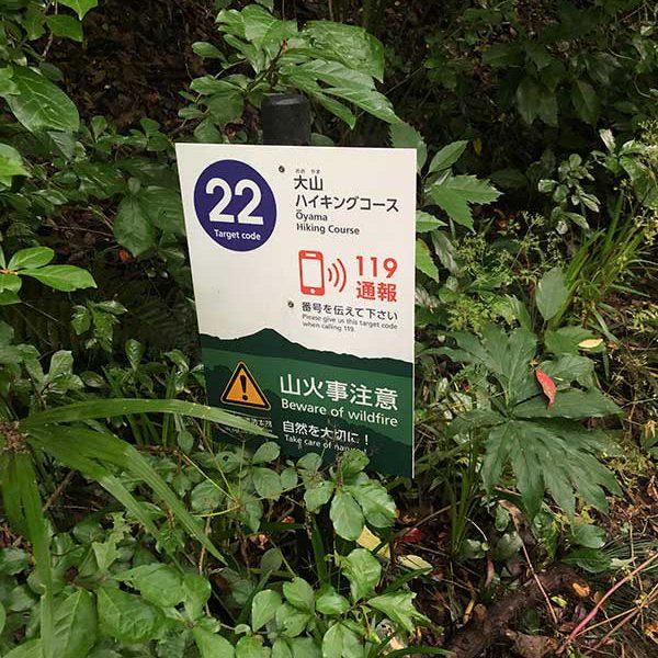大山ハイキングコース22